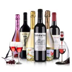 法国进口红酒 干红白起泡葡萄酒 6支装整箱组合750ml*6  送醒酒器+酒杯